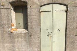 Paashazen speuren op Fort bij Spijkerboor